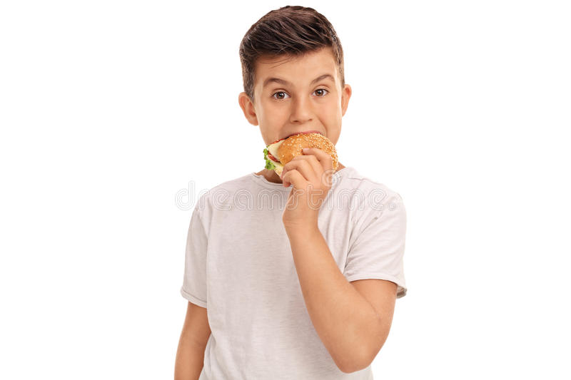 Little boy eating a sandwich royalty free stock image