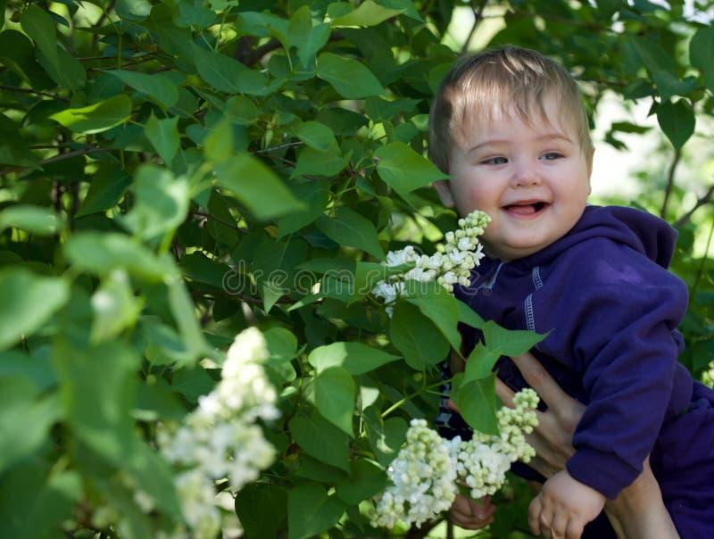 Little Boy em um fundo verde fotografia de stock