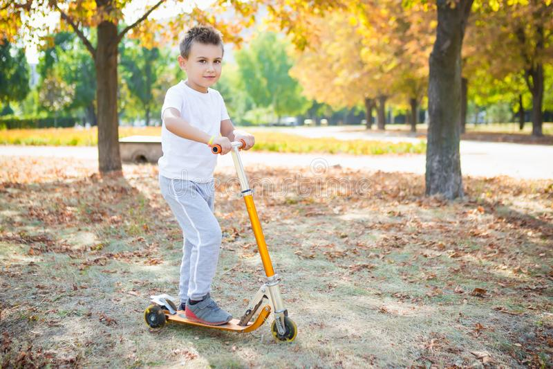 Little Boy en parc image stock