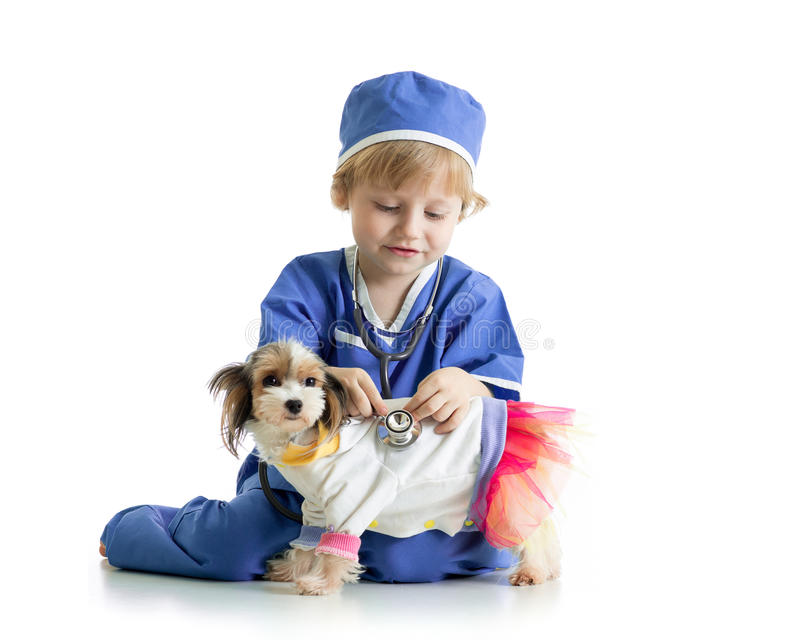 Little boy examining puppy dog, isolated on white background stock photo
