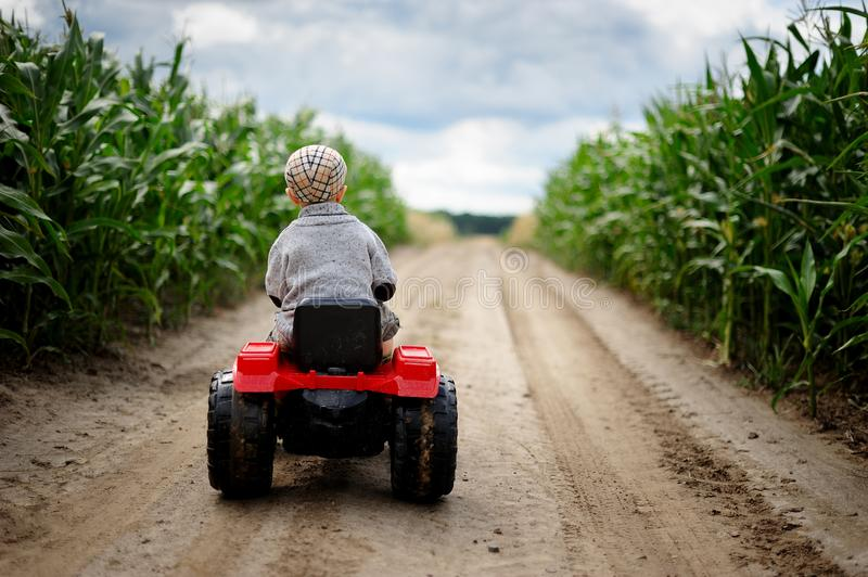 A little boy farmer is driving a small tractor on a dirt road through a cornfield. A portrait of cute child wearing sweater and hat, driving a small toy tractor royalty free stock photography