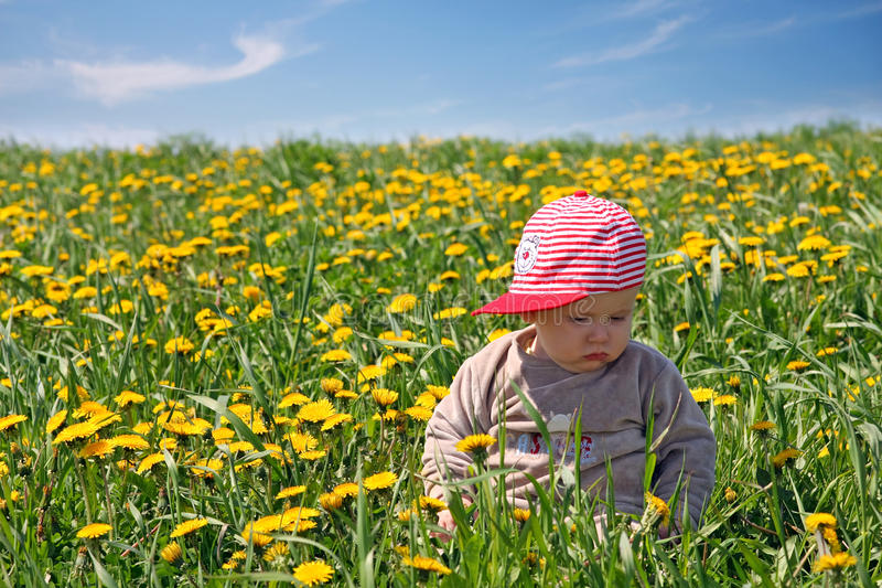 Little boy on the field stock photography