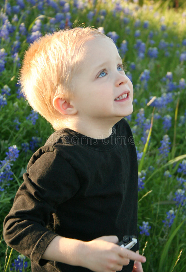 Little Boy in Flowers royalty free stock images
