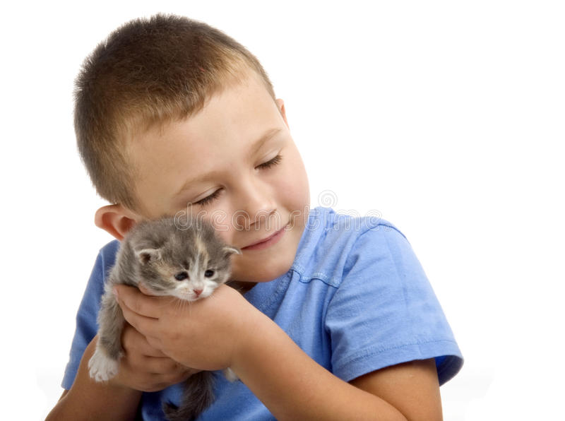 The little boy with a fluffy kitten royalty free stock photo