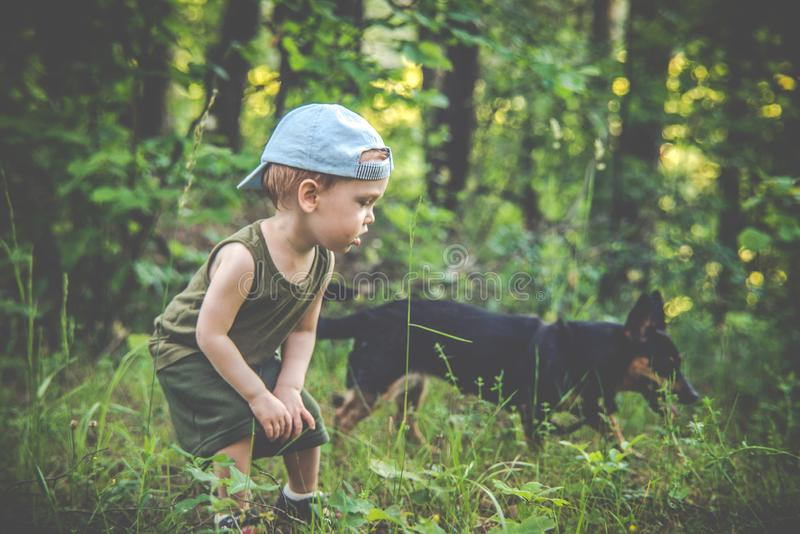 Little boy in forest with a dog, friendship royalty free stock photo