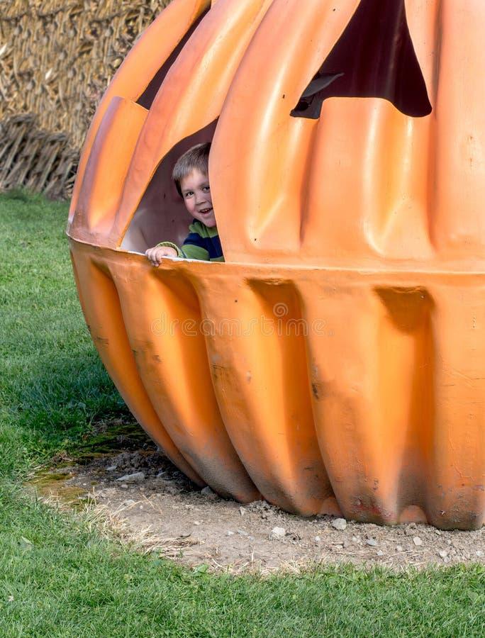 Little boy and giant pumpkin. Little boy peeks out from inside a giant pumpkin house stock photos