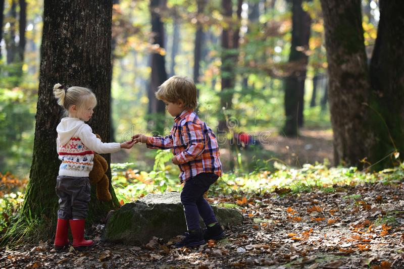 Little boy and girl friends camping in woods. Childhood and child friendship, love and trust. Brother and sister have stock image
