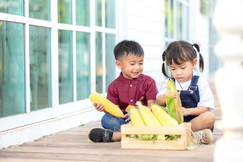 Little boy and little girl help to peel sweet corn, fun stock photo