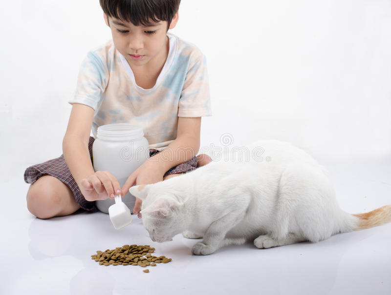 Little boy giving food for cat. On the floor stock images