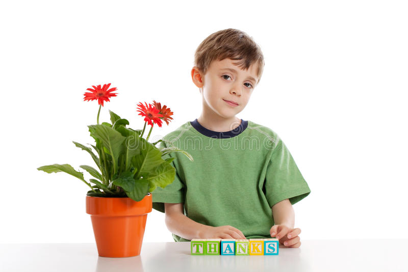 Little boy giving thanks. A 6 year old boy with blocks spelling thanks isolated on white stock photos