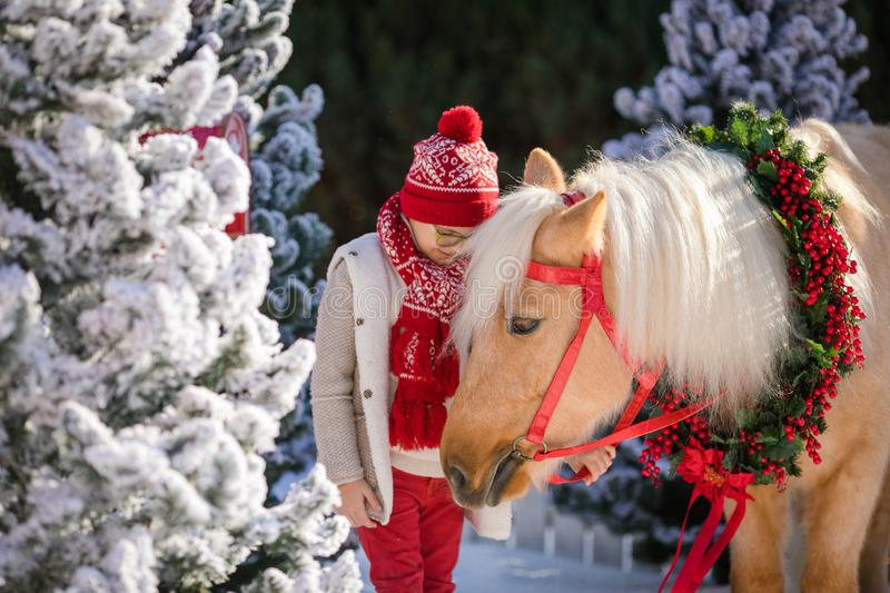 Little boy with glasses holds his adorable pony with festive wreath near the small wooden house and snow-covered trees. royalty free stock image