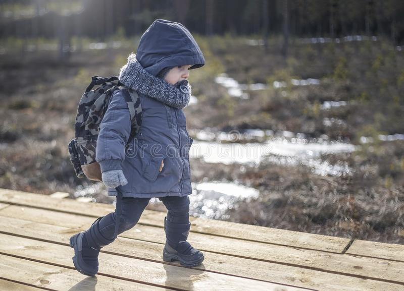 Little boy go hiking with backpack on the forest on a cold day royalty free stock image
