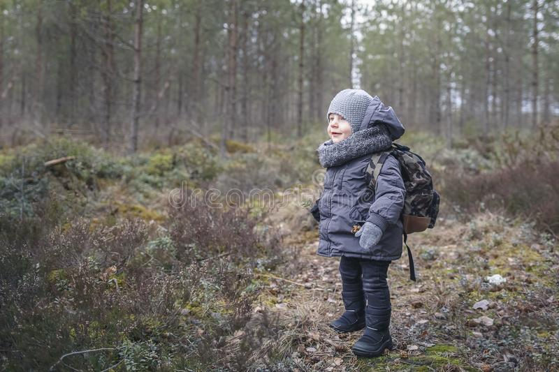 Little boy go hiking with backpack on the forest on a cold day royalty free stock photo