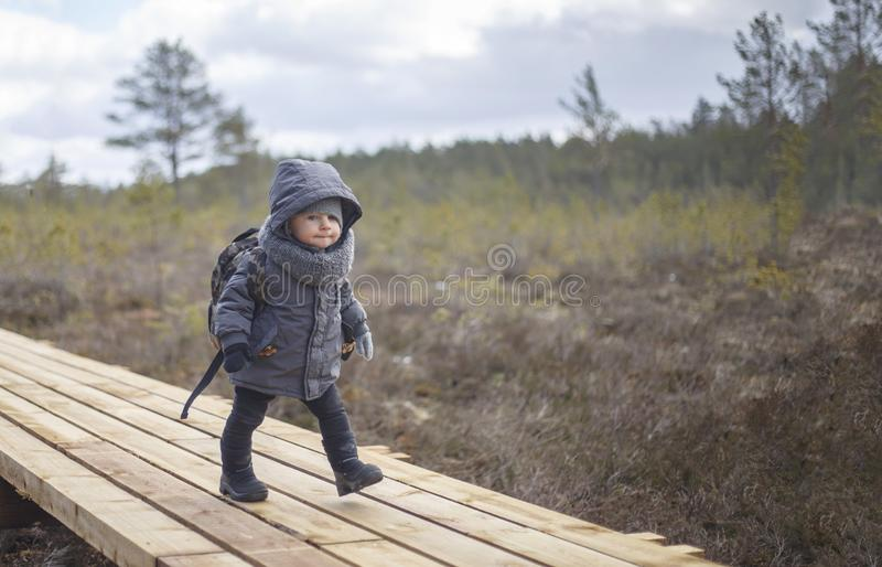 Little boy go hiking with backpack on the forest on a cold day stock photos