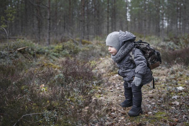 Little boy go hiking with backpack on the forest on a cold day royalty free stock photos