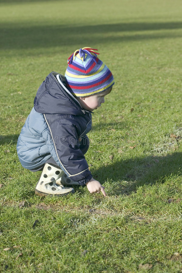 Little boy on the grass stock photo