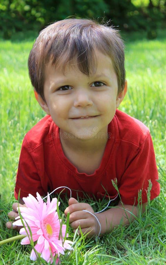Little boy on the grass stock photos