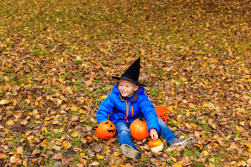 download little boy in halloween costume at autumn park stock image image of party