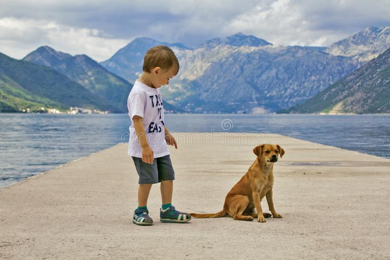 Little boy is happy to meet with a puppy. A little boy met a puppy on the pier. The kid rejoices at this meeting, looks interested at the dog and points to the royalty free stock images