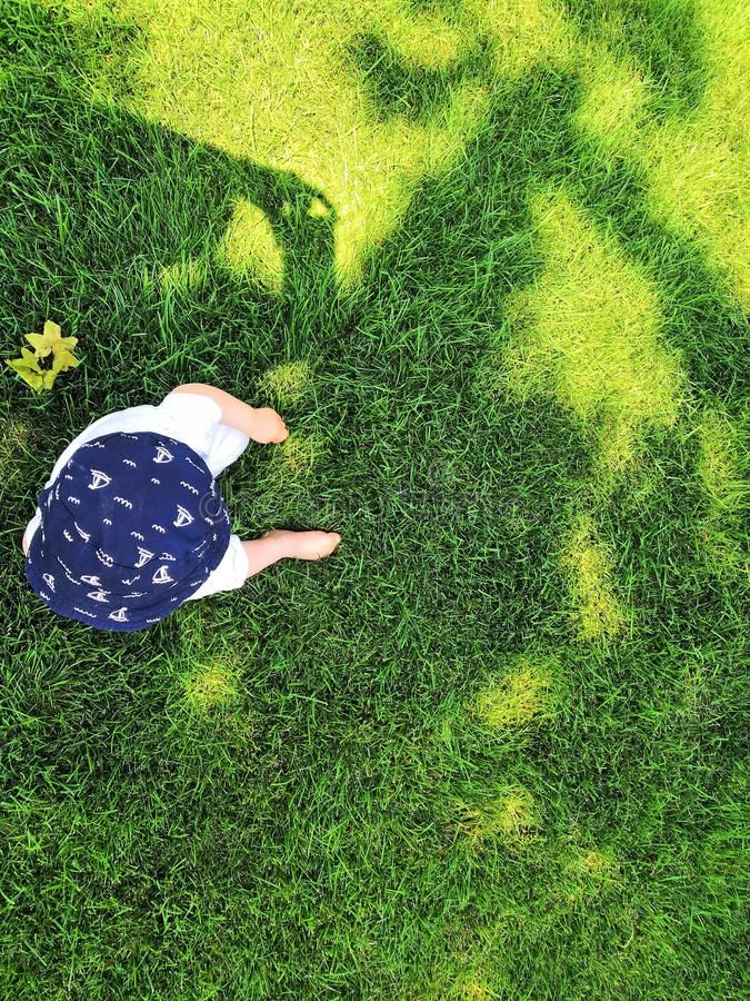 Little boy in hat standing on the field with dandelions in summer. Baby on green grass with shadow in summer stock image