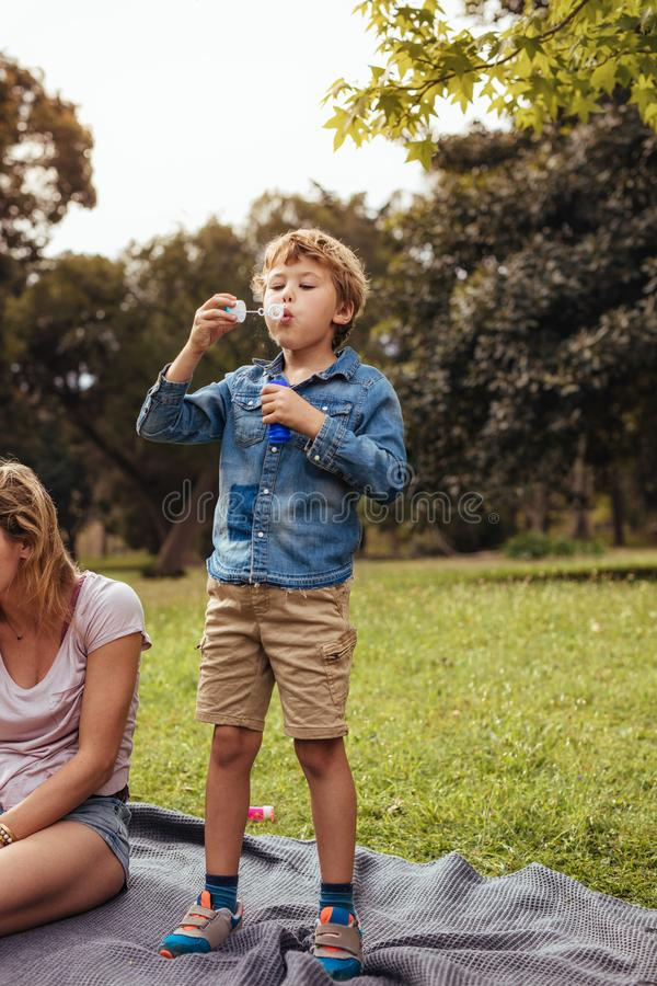 Little boy having fun on picnic at the park royalty free stock photography