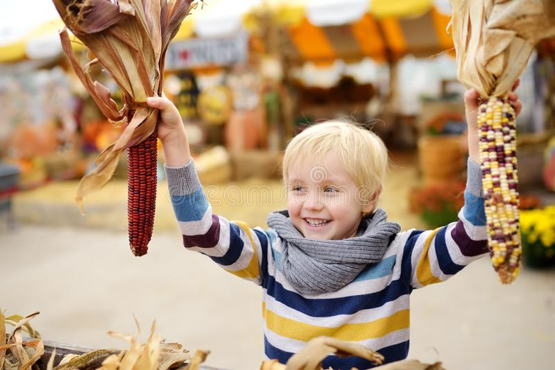 Little boy having fun on a tour of a pumpkin farm at autumn. Child holding indian corn royalty free stock images