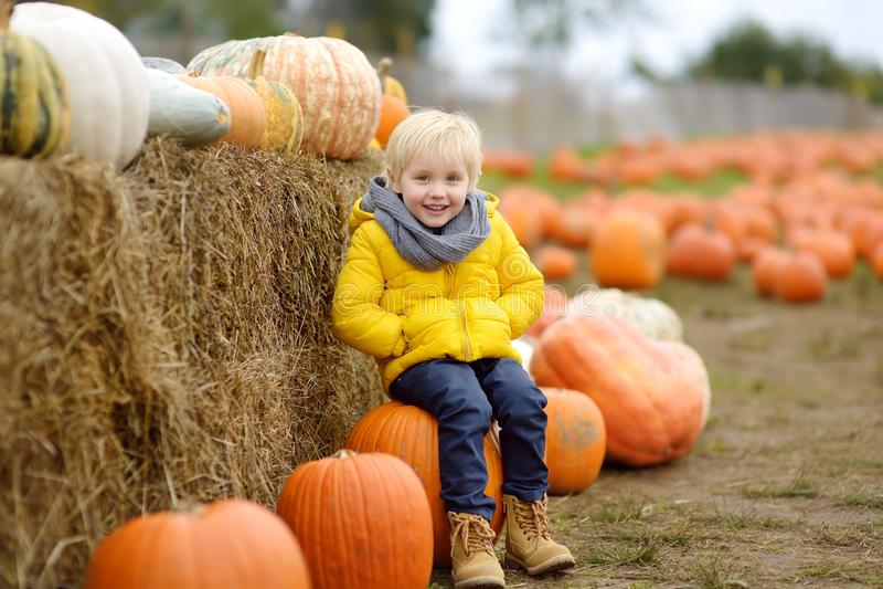 Little boy having fun on a tour of a pumpkin farm at autumn. Child sitting on giant pumpkin royalty free stock photography