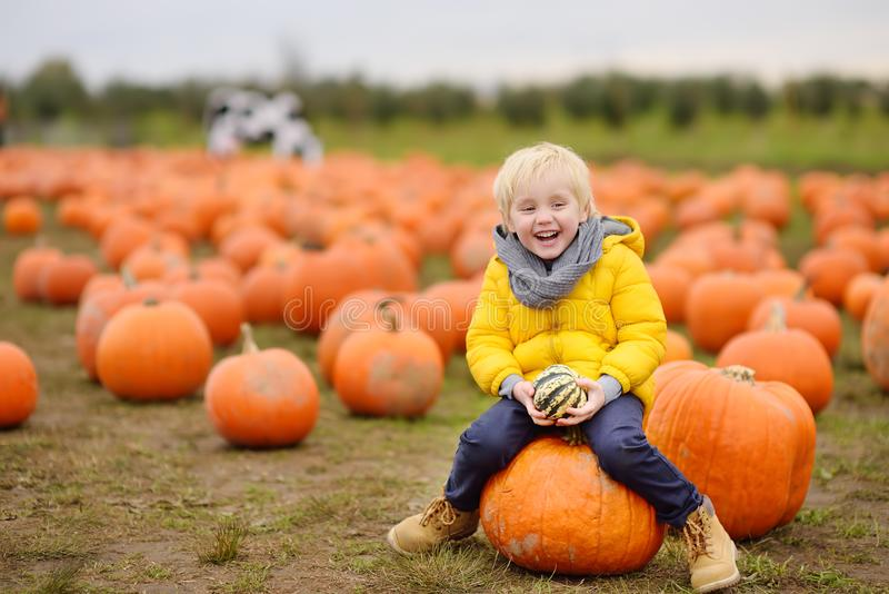 Little boy having fun on a tour of a pumpkin farm at autumn. Child sitting on giant pumpkin royalty free stock images
