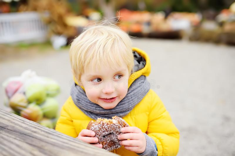 Little boy having lunch after shopping on traditional farmer agricultural market at autumn. Child eating donuts. Near kid on bench royalty free stock photos