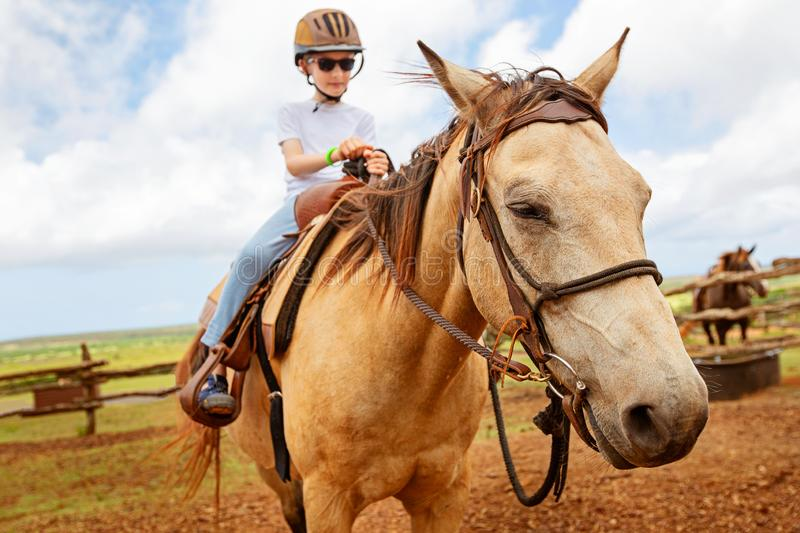 Kid riding a horse. Little boy in helmet riding a horse, active vacation concept stock image