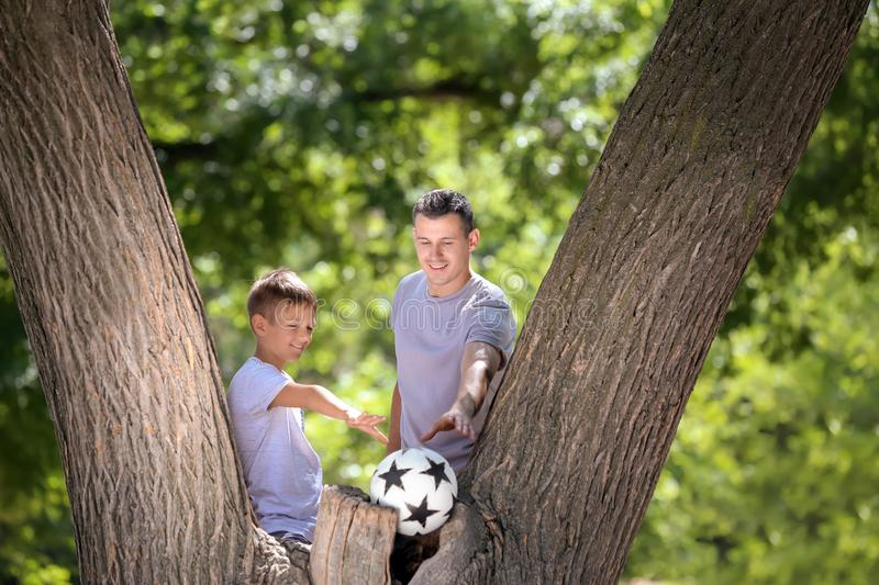 Little boy and his dad with soccer ball near tree outdoors stock photo