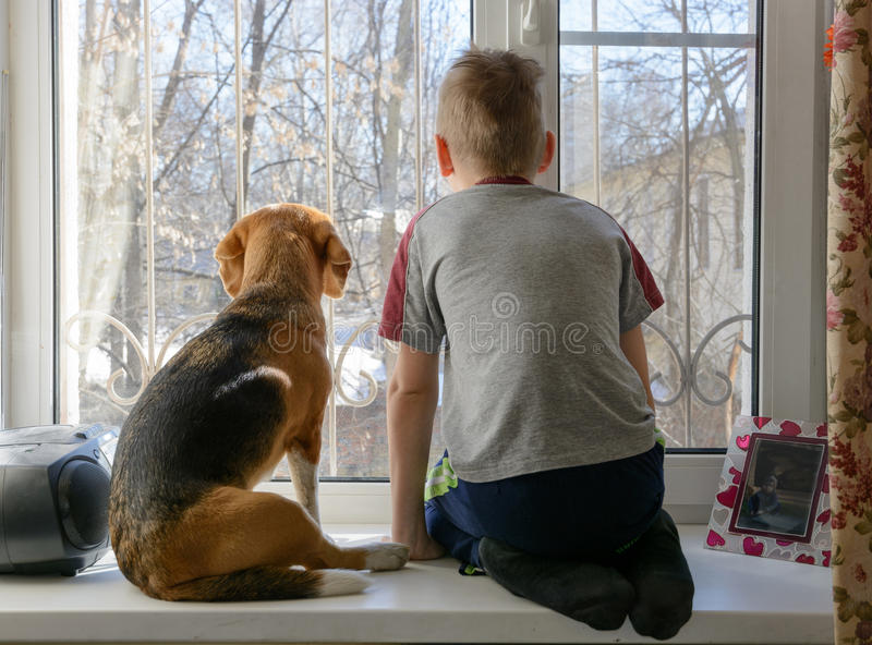 Little boy with his dog looking through the window stock photography