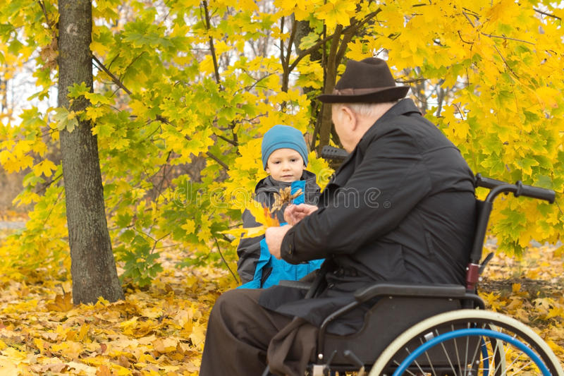 Little boy with his handicapped grandfather. Little boy playing with his handicapped grandfather in a wheelchair bringing him colourful yellow autumn leaves from stock image