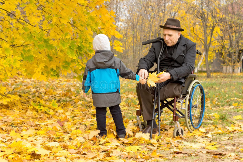 Little boy with his handicapped grandfather. Who is confined to a wheelchair playing amongst the colourful yellow autumn leaves in a beautiful woodland royalty free stock images