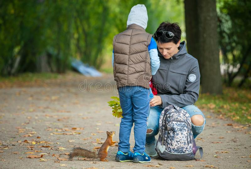 Little boy with his mother feeding a squirrel at a park stock photo