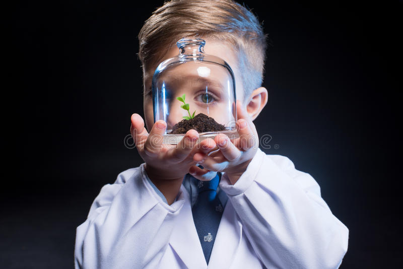 Little boy holding plant royalty free stock image