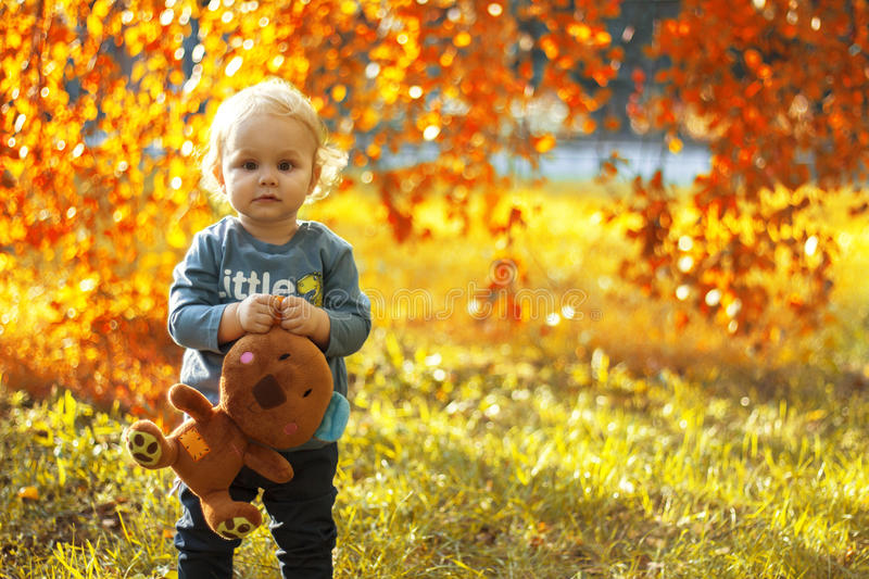 Little boy holding a stuffed toy in the park outdoors in autumn stock image