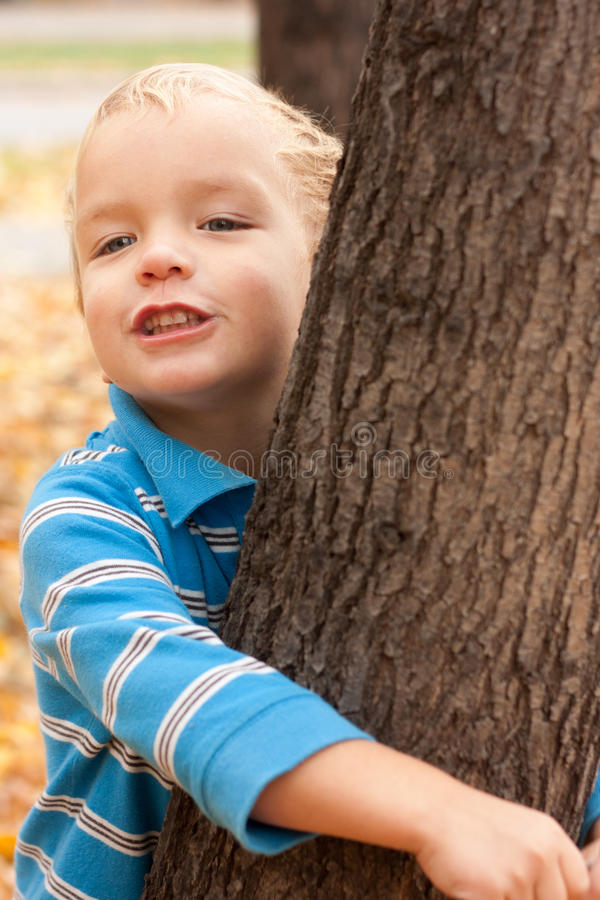 Little boy hugging a tree. royalty free stock images