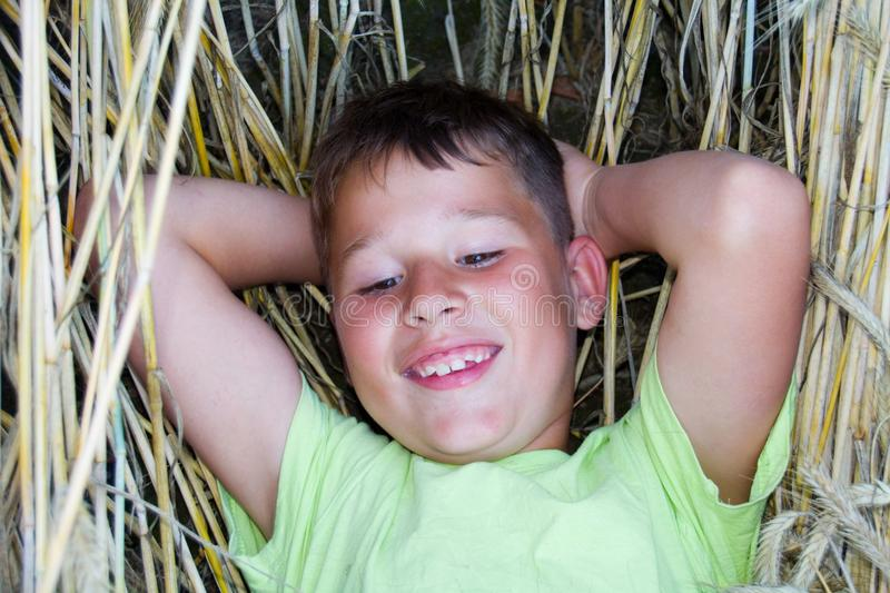 Little boy lies in the straw royalty free stock photography