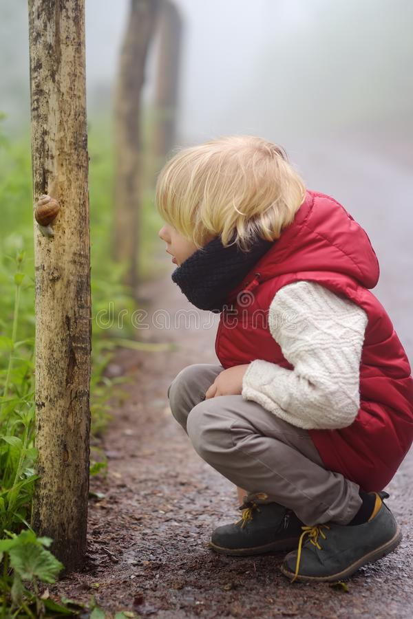 Little boy looking on big snail during hike in forest. Preschooler child explore nature. Developing outdoors activity for kids stock photography