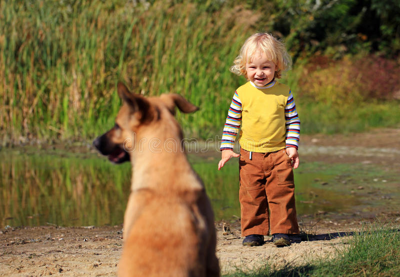 Download Little Boy Looking At A Dog Stock Photo - Image: 25740442