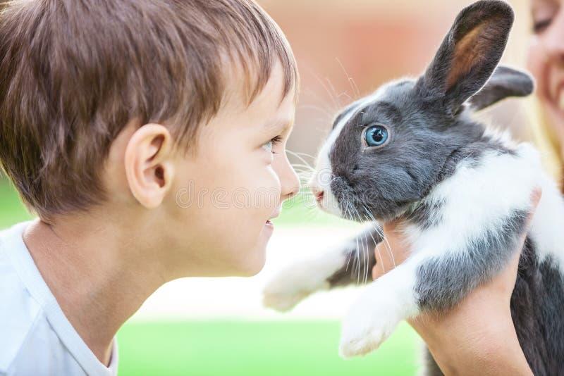 Little boy looking at pet rabbit royalty free stock photos