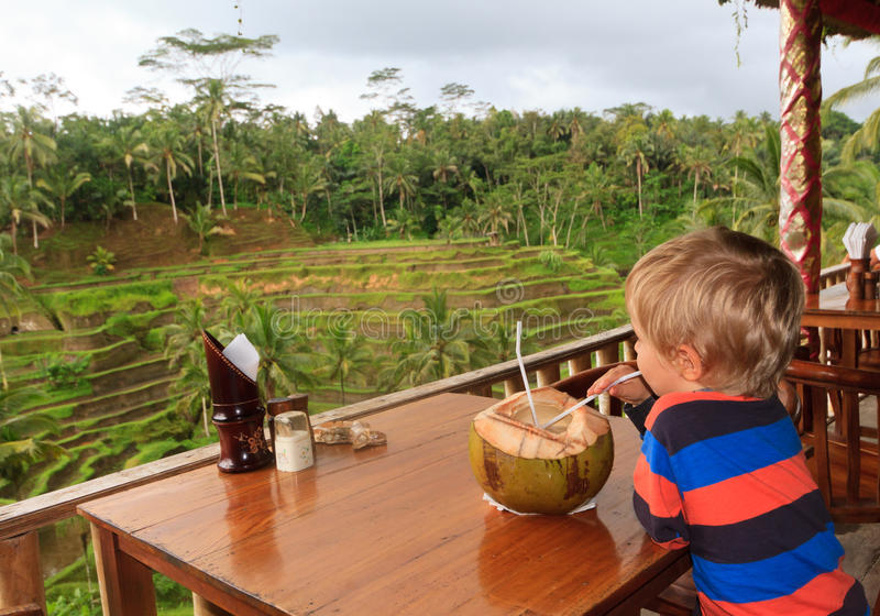 Little boy looking at rice fields stock photos