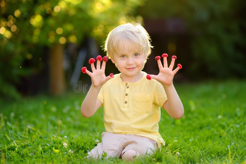 Little boy looks at the raspberries on his fingers sitting at the backyard. Childhood concept royalty free stock photography