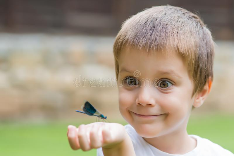 Little Boy Making Funny Face  And Looking Dragonfly.  royalty free stock photos