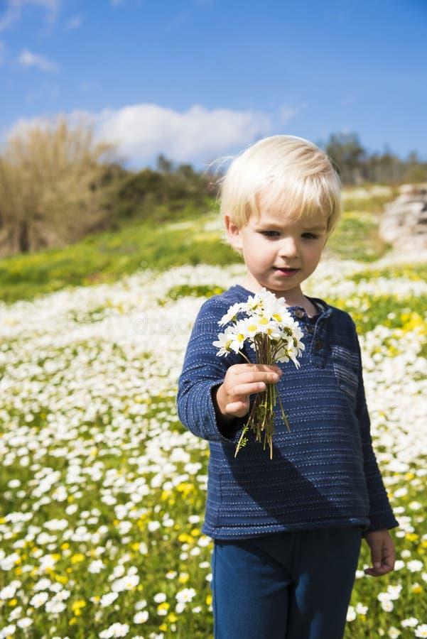 Little Boy mignon tient un bouquet de Daisy Flower image libre de droits