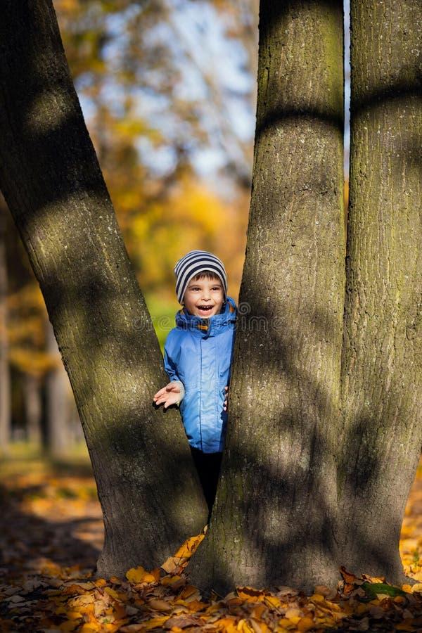 Little Boy na gałąź dziecko wspina się drzewa fotografia stock