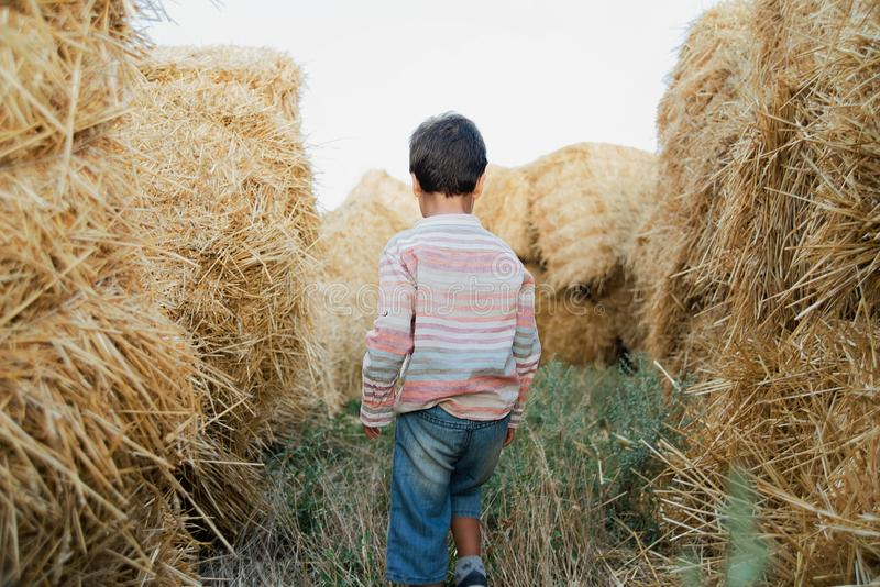 Little boy near hay bale in field. Child on farm land. Wheat yellow golden harvest in autumn. Countryside natural landscape stock images