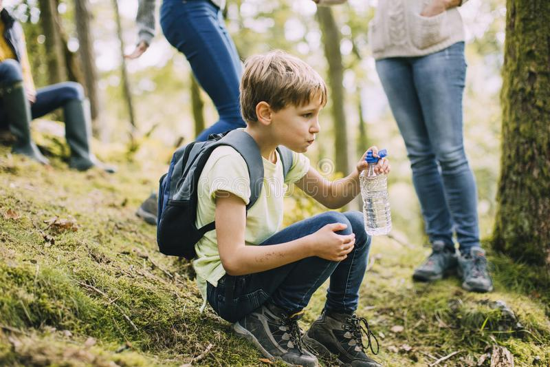 Having a Water Break from Hiking royalty free stock photo