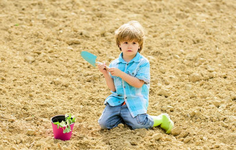 Little boy planting flower in field. Fun time at farm. Happy childhood concept. Child having fun with little shovel and stock photo